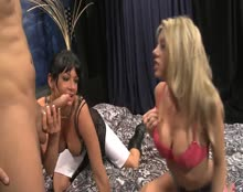 Home Affairs Vol 1 - Shawna Lenee and Tory Lane